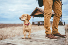 Randonneur et chien se tenant sur un passage couvert en bois Images stock