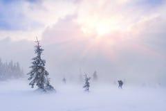 Randonneur extrême d'aventure dans les montagnes Image stock