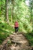 Randonneur féminin dans une forêt photo libre de droits