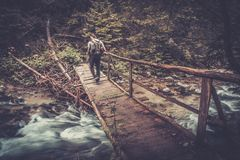 Randonneur marchant au-dessus du pont en bois dans une forêt Photographie stock