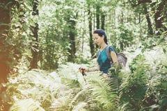 Randonneur marchant parmi des buissons de fougère Image libre de droits