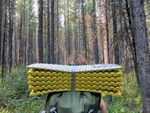 Randonneur prêt à augmenter par la forêt profondément dans la roche canadienne image libre de droits