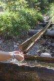Randonneur prenant l'eau du courant de montagne Photographie stock