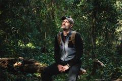 Randonneur se reposant sur un tronc dans une belle forêt verte avec la lumière du soleil image libre de droits