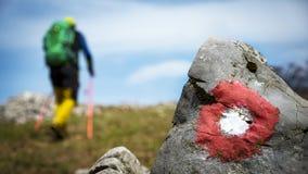 Randonneur trimardant dans la montagne photographie stock libre de droits