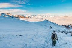 Randonneur trimardant sur la neige sur les Alpes Vue arrière, mode de vie d'hiver, sentiment froid, paysage majestueux de montagn Photos libres de droits