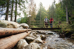 Randonneurs admirant la nature d'un pont de rivière Images stock