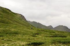 Randonneurs d'Alaska Photos stock