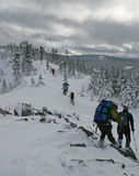 Randonneurs dans la neige Photo stock