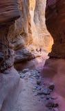 Randonneurs en canyon de fente Image stock