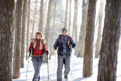 Randonneurs l'hiver neigeux augmentant sur la montagne Image libre de droits