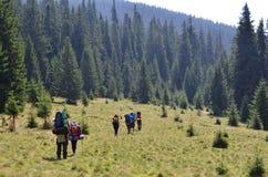 Randonneurs marchant en montagnes Images libres de droits
