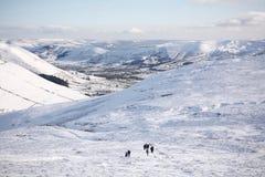 Randonneurs montant un scout plus aimable dans la neige Photographie stock libre de droits
