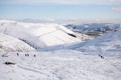 Randonneurs montant un scout plus aimable dans la neige Photo stock