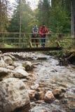 Randonneurs regardant la vue d'un pont dans la forêt Photo libre de droits