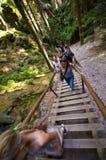 Randonneurs sur des escaliers, ville de roche d'Adrspach, République Tchèque Photos stock