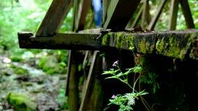Randonneurs sur le pont en bois