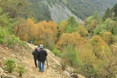 Randonneurs trimardant sur le chemin en montagne Image libre de droits