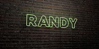 RANDY -Realistic Neon Sign on Brick Wall background - 3D rendered royalty free stock image. Can be used for online banner ads and direct mailers Stock Image