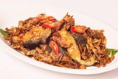Rane fritte nello stile di Taiwan con il peperoncino rosso e le erbe sul pla bianco immagini stock libere da diritti
