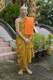 Rane pescarici buddisti Fotografie Stock