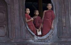 Rane pescarici buddisti in Myanmar (Birmania) Immagini Stock