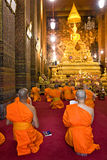 Rane pescarici che pregano a Wat Po, Bangkok, Thailandia. fotografia stock