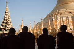 Rane pescarici di preghiera al pagoda di Schwedagon Fotografia Stock Libera da Diritti