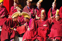 Rane pescarici tibetane immagine stock libera da diritti