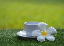 Ranek filiżanka na trawie z kwiatem, miękka ostrość zdjęcia royalty free
