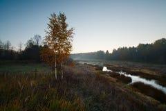 Ranek jesieni drzewny rzeczny wschód słońca Fotografia Royalty Free