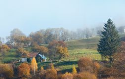 Ranek jesieni Karpackie góry, Ukraina Obraz Royalty Free