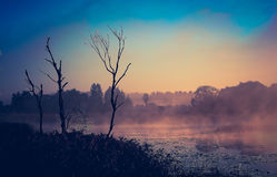 Ranek jesieni rzeka Obrazy Royalty Free