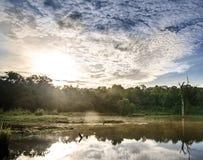 Ranek jezioro Zdjęcia Royalty Free