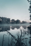 Ranek jezioro Obraz Royalty Free
