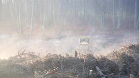 Ranek, mgła praca ekskawatory i buldożery na budowie, Zmielony wyrównanie zdjęcie wideo