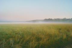 Ranek mgła nad łąkami i polami blisko wzgórzy Zdjęcia Royalty Free