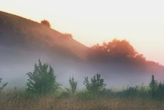 Ranek mgła nad łąkami i polami blisko wzgórzy Obrazy Stock