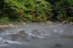 Ranek mgła nad góry rzeka po środku zielonego lasu Obraz Royalty Free