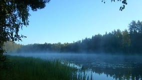 Ranek mgła nad wodą w promieniach powstający słońce zdjęcie wideo