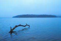 Ranek mgła przy jeziorem zdjęcie stock