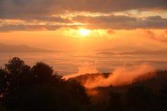 Ranek mgła zakrywająca na wzgórzu po wschodu słońca przy tropikalnym lasem Fotografia Stock