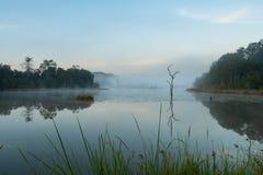 Ranek mgły zrozumienia depresja nad jeziorem podczas zimy fotografia stock