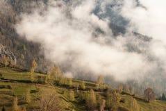 Ranek mgła Zdjęcia Stock