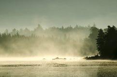 Ranek mgła Zdjęcie Royalty Free