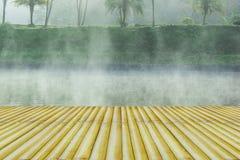 Ranek mgła Obraz Stock