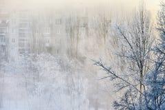ranek mgława zima Fotografia Royalty Free