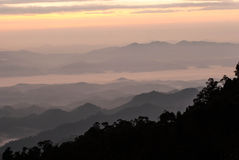 Ranek mgła Na górze - Khun Sathan, Tajlandia Obraz Royalty Free