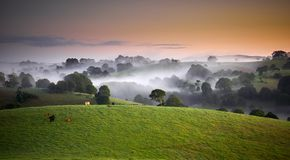Ranek mgła nad tocznymi wzgórzami Zdjęcia Royalty Free