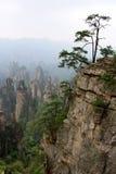 ranek mgłowe góry Zdjęcie Stock